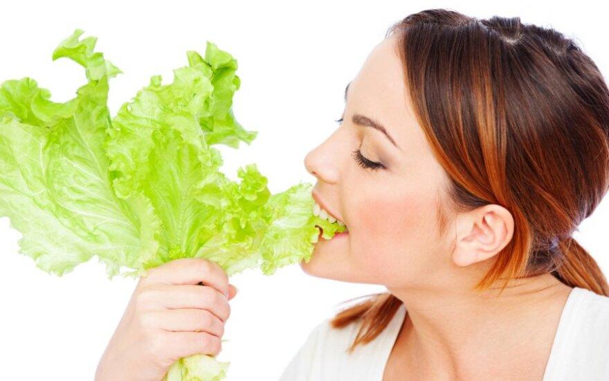 Apie vegetarus ir priešiškai nusiteikusius mėsėdžius