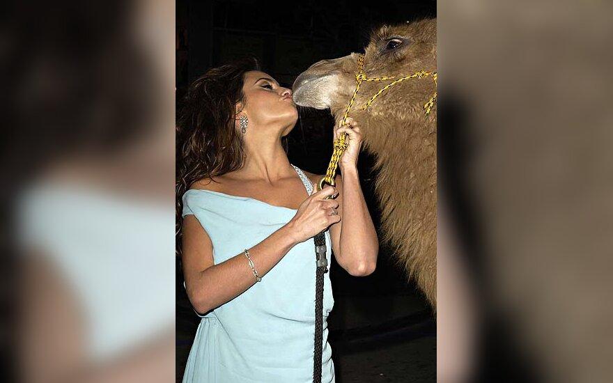 Penelope Cruz ir kupranugaris