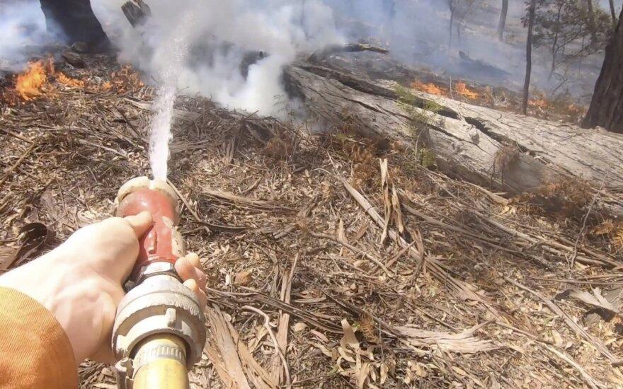 """Australijoje susijungę du didžiuliai gaisrai sukūrė naują """"megagaisrą"""""""