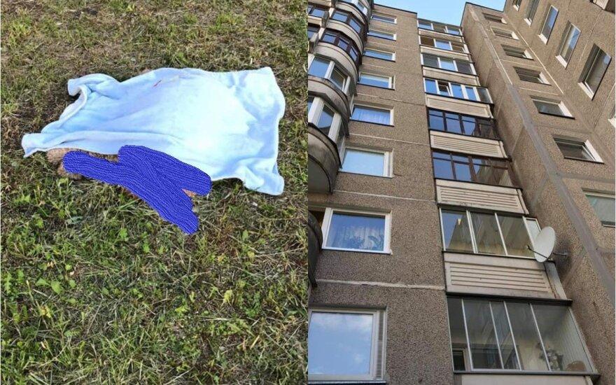 Sostinės daugiabutyje pro 9 aukšto langą iškrito šuo: tolesnis jo šeimininkės elgesys abejingų nepaliko