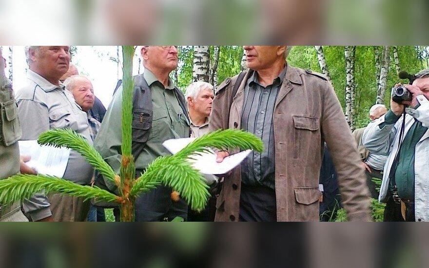 Praėjusių metų nugalėtojo Antano Šablauskio privatus miškas Raseinių raj.