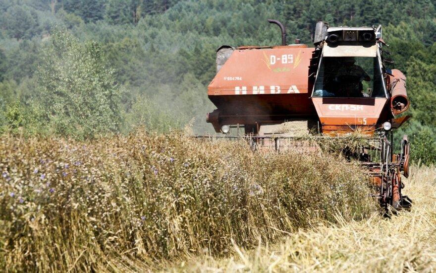Skaudu girdėti politikų patyčias – neliečiamųjų etiketė ūkininkams klijuojama neteisingai