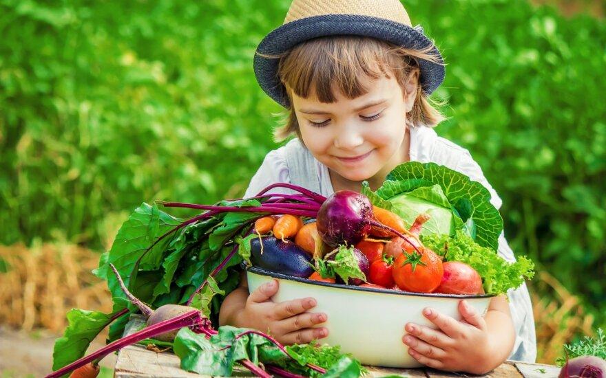 Jau nuo mažens tėvai su vaikais gali namie bandyti pasėti augalų sėklas