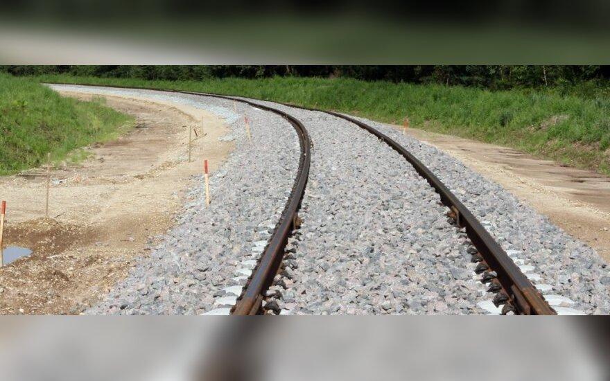 Estonia's local councils consider Rail Baltica environmental impact report