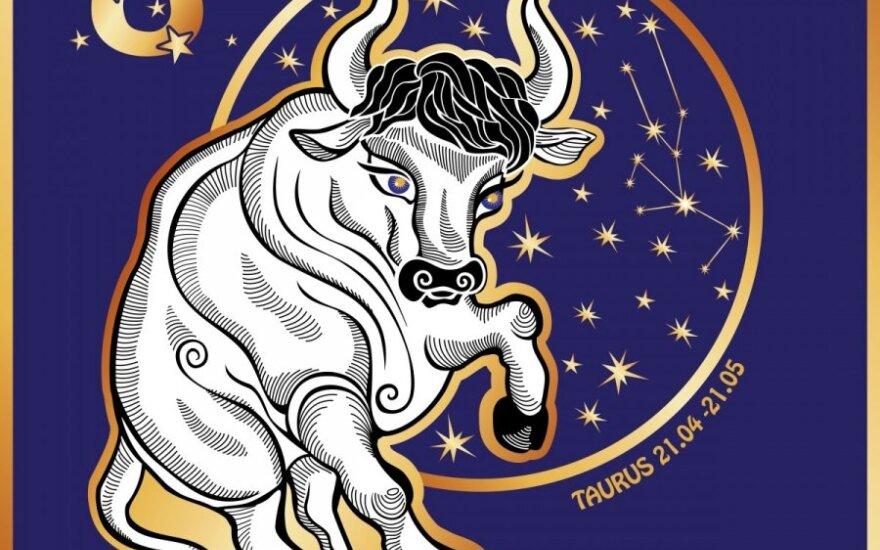 Astrologinių ženklų portretai: viskas apie Jautį
