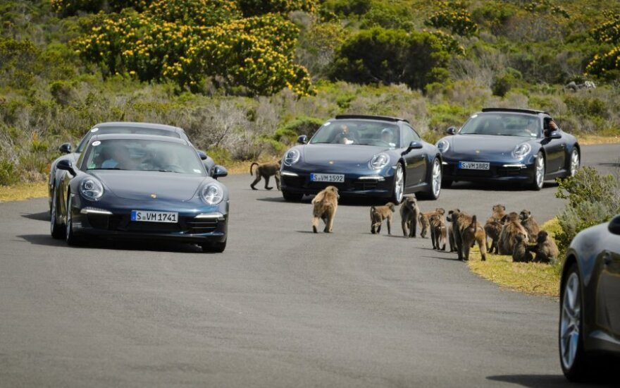 Porsche atstovų renginys Cape Towne