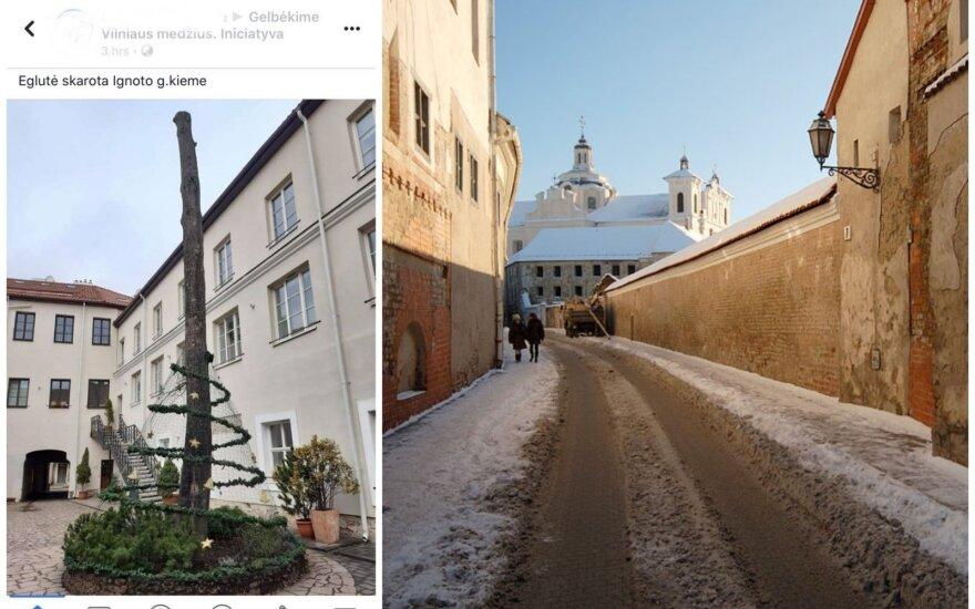 Kalėdų eglė Šv. Ignoto gatvėje