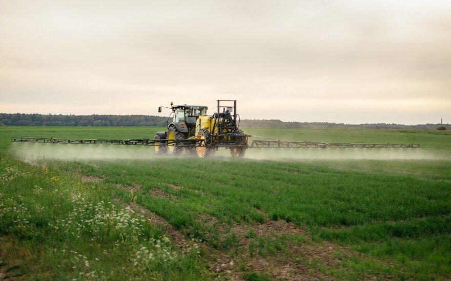 Herbicidams atsparios piktžolės jau Lietuvoje – ką daryti