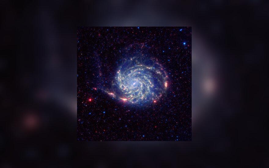 """Vėjo malūnėlio (dar žinoma """"Messier 101"""" vardu) galaktika"""