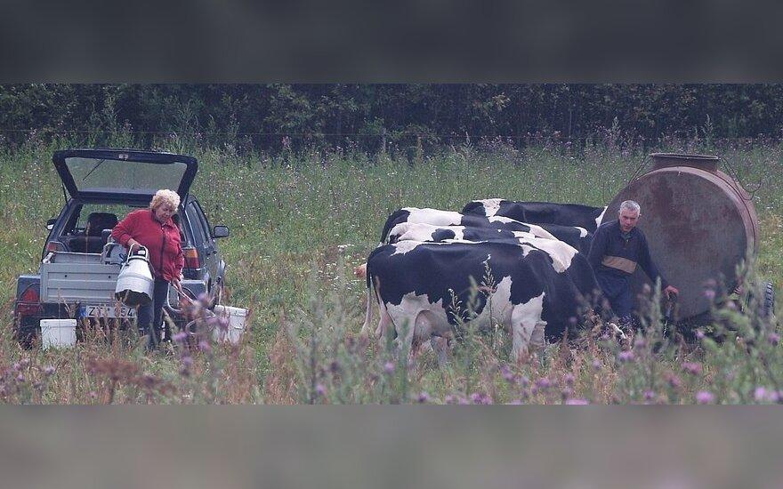 """Priemonei """"Žemės ūkio produktų perdirbimas ir pridėtinės vertės didinimas"""" prašoma gerokai daugiau paramos lėšų nei yra skirta, J.Skripkausko nuotr."""