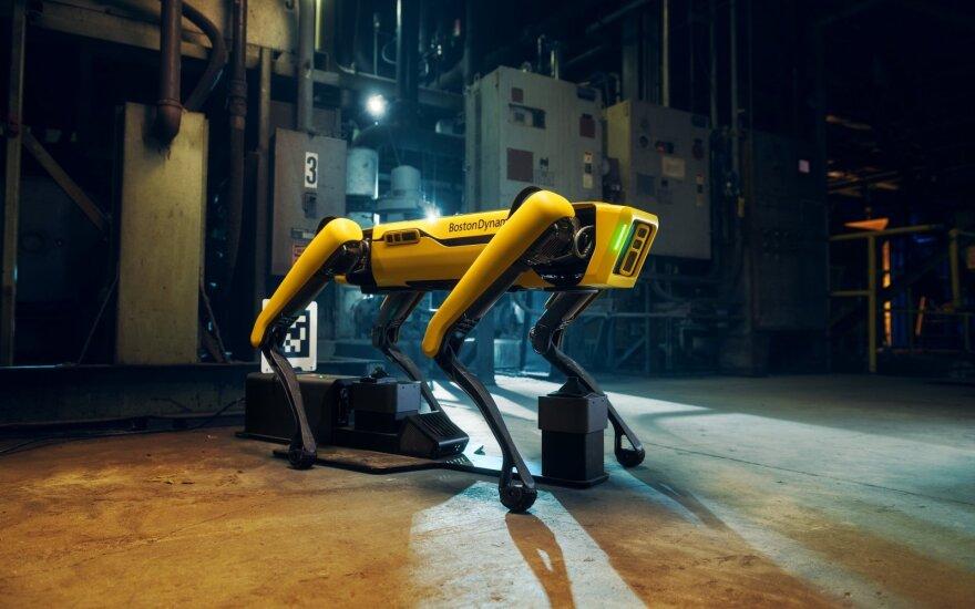 Boston Dynamics šuo robotas
