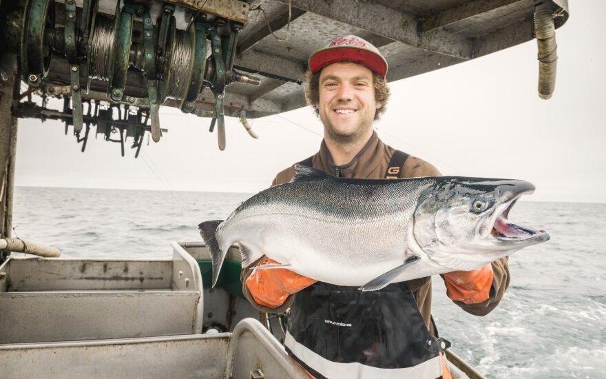 Aliaskoje sugauta lašiša, Aliaskos jūros gėrybių rinkodaros instituto nuotrauka
