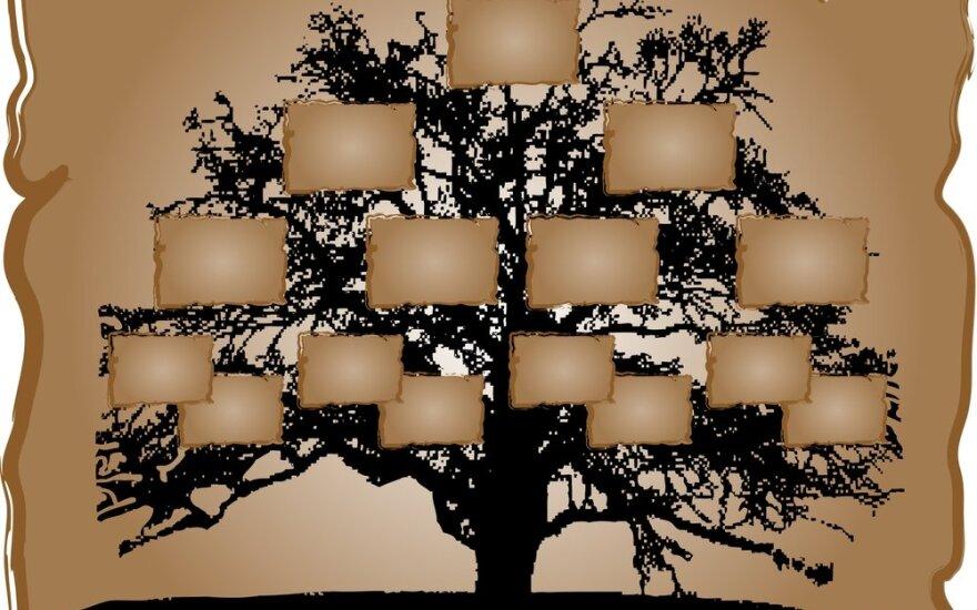 Norite susikurti giminės medį? Šiandien tai daryti kur kas paprasčiau