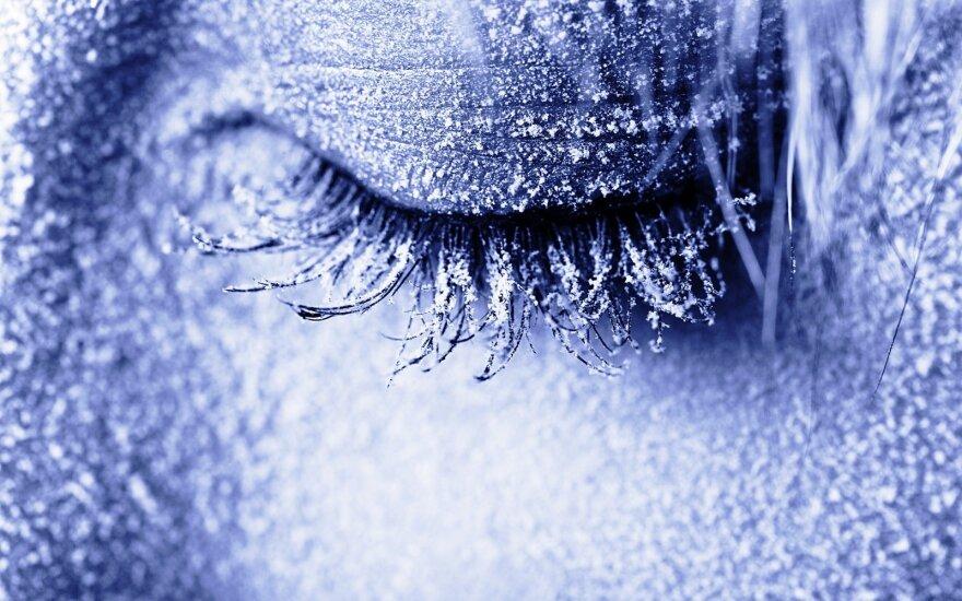 Jau greitai žmonės gali būti užšaldyti gyvi: ar ryžtumėtės tam, kad išvystumėte ateitį?