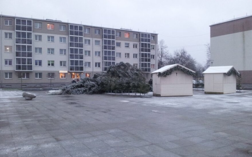 Lietuvoje vėjas nuvertė dar vieną Kalėdų eglutę