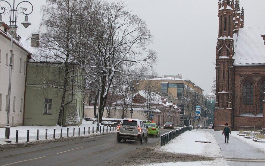 Lietuva suteikė politinį prieglobstį dar vienam aktyvistui iš Rusijos