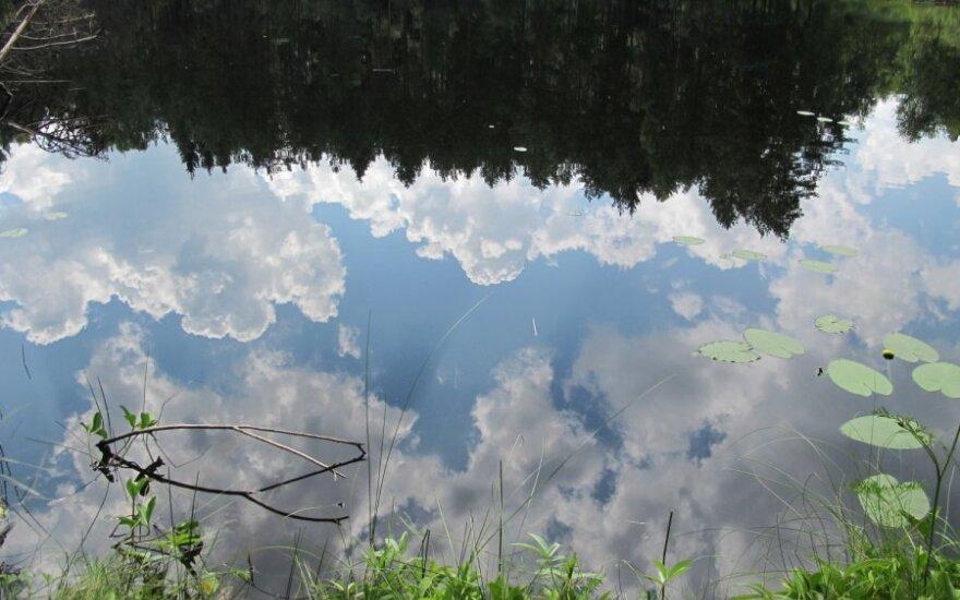 Girutiškio gamtinis rezervatas prilygintas Šiaurės Amerikos didiesiems ežerams