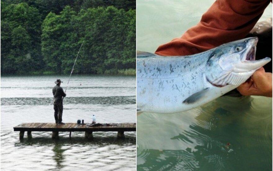 Mėgėjų žvejyba