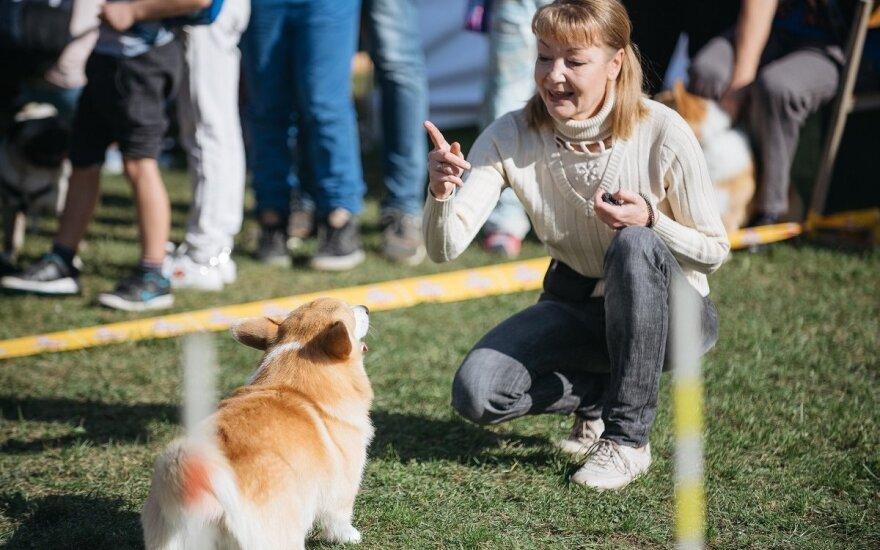 Pasaulinė gyvūnų diena Gargžduose