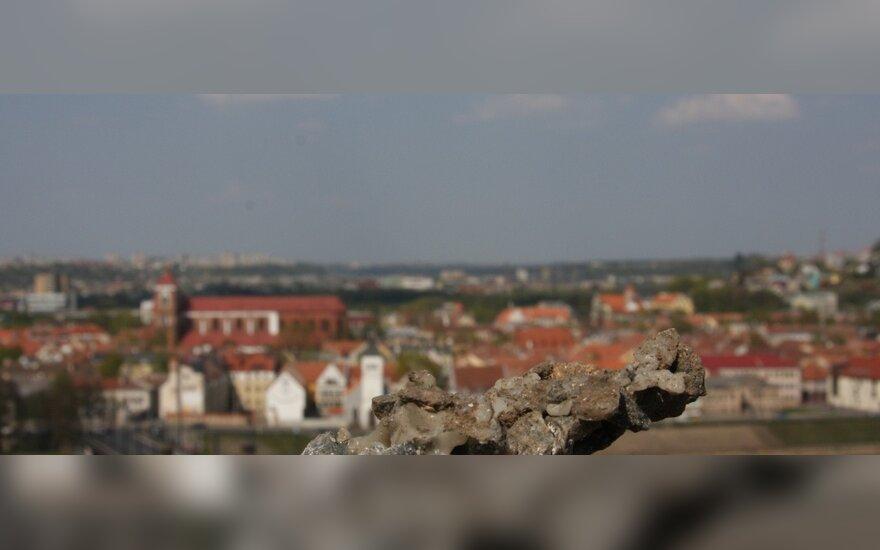 Pelėdų kalną Kauno Žaliakalnyje siūloma paversti poilsio zona