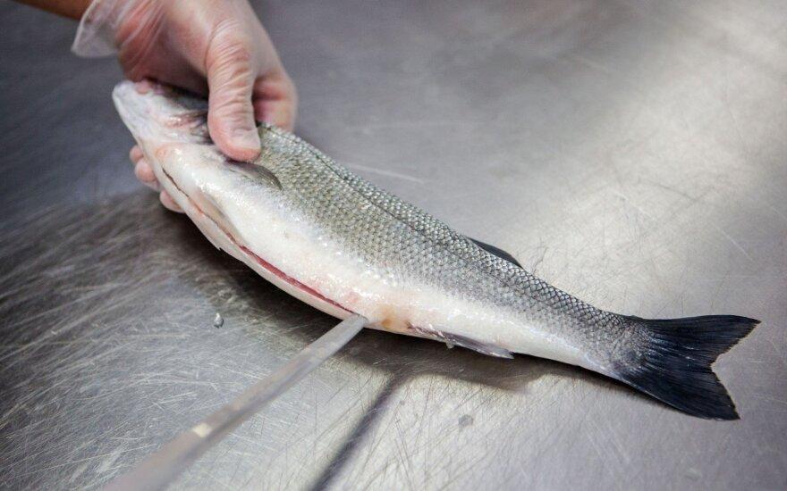 Ką reikia žinoti perkant šviežią žuvį?