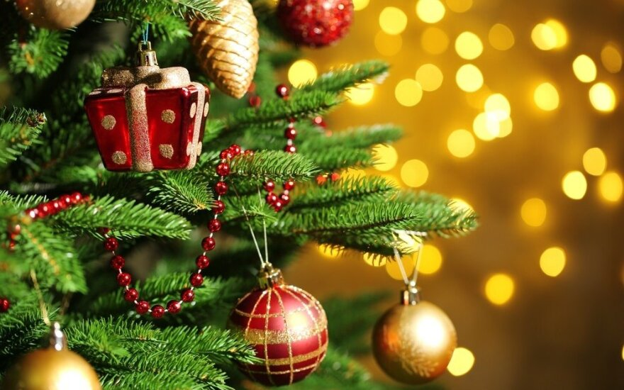 10 įdomių faktų apie Kalėdų eglę