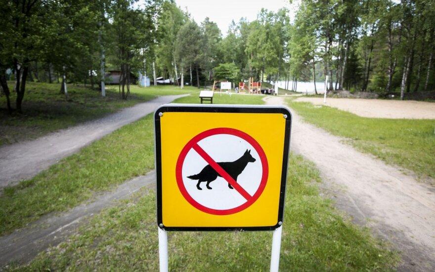 Sužinojusi šuns išvežimo kainą apstulbo: čia gi ne dramblys