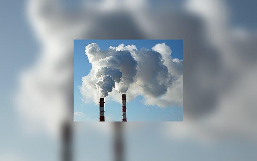 Aplinkos ministerijos aplaidumas gali kainuoti 0,5 mlrd. litų