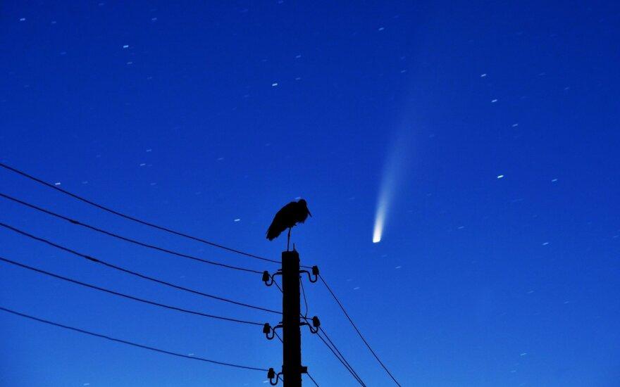 Neowise kometa