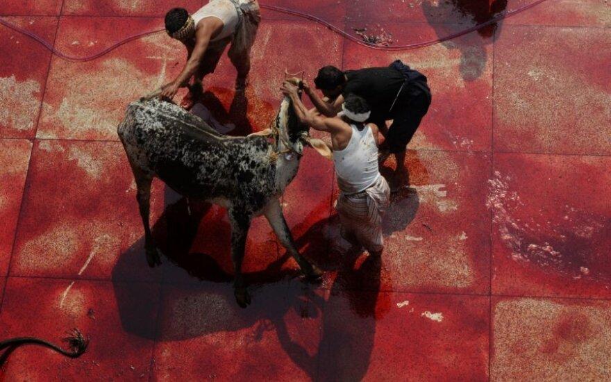 Pirkėjai baiminasi, kad dėl nežinojimo gali nusipirkti ritualiniu būdu paskersto galvijo mėsos