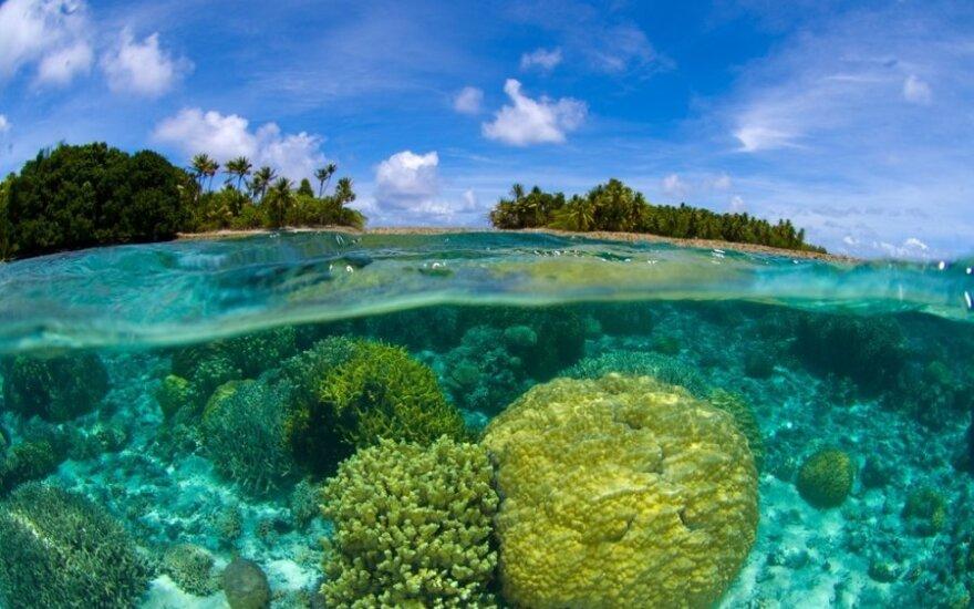 Maršalo salos Ramiajame vandenyne