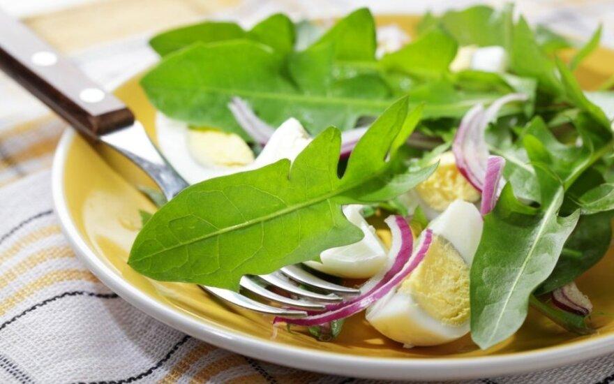 Sveikuoliškos pienių lapų salotos