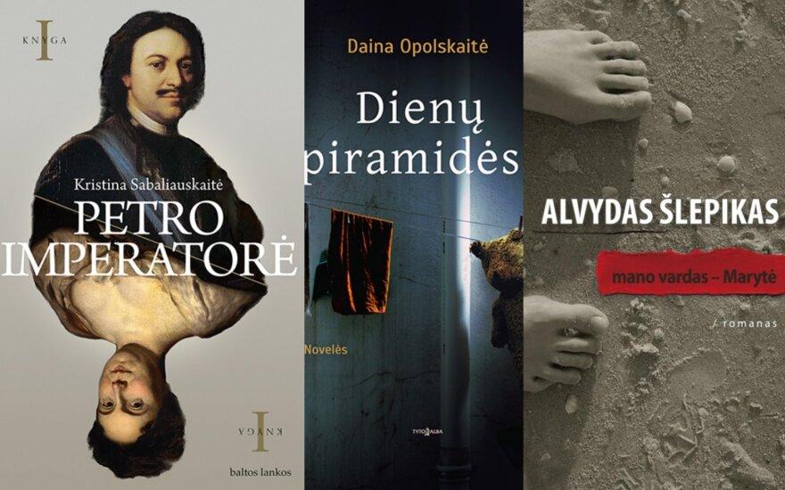 Rekordas: užsienyje bus išleistos dar 46 Lietuvos autorių knygos