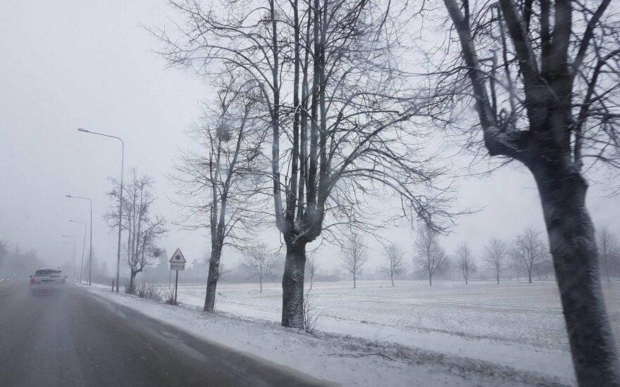 DELFI skaitytojai užfiksavo: į Kauną sugrįžo sniegas