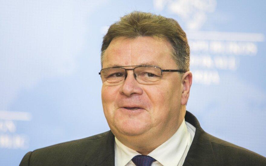 Foreign Affairs Minister Linas Linkevičius