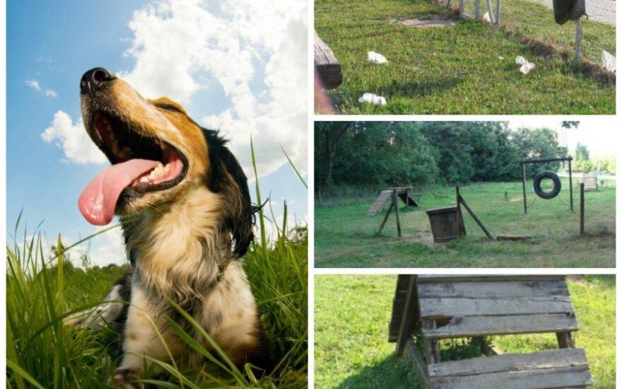 Už rinkliavą savivaldybės šunų šeimininkams pasiūlo nuskurusias aikšteles (LGTAO ir Shutterstock nuotr. montažas)
