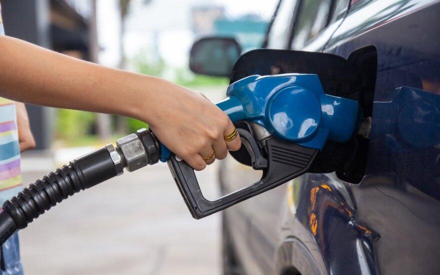 """""""Baltic Petroleum"""" dividendų šiemet nemokės"""
