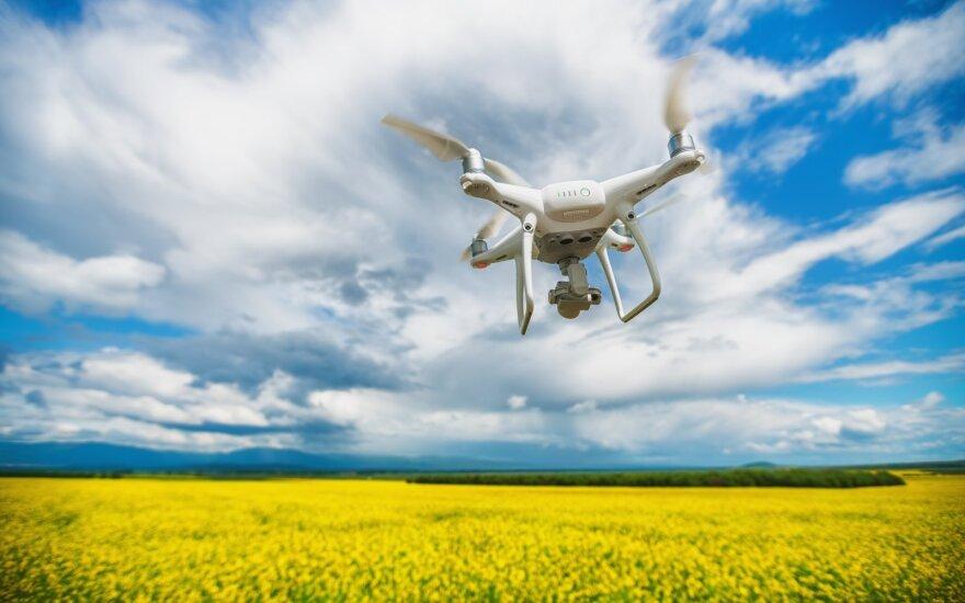 Rapsai ir dronas