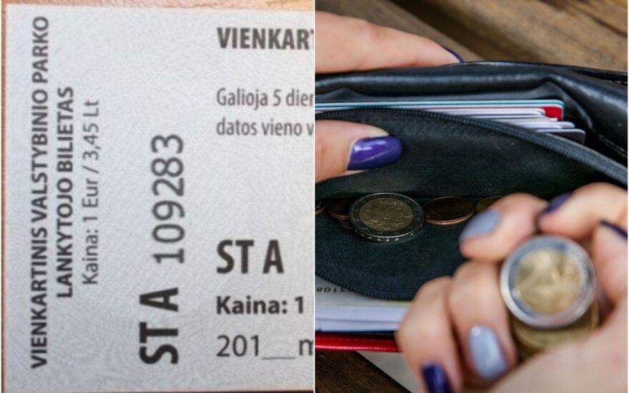 Lankytojo bilietas
