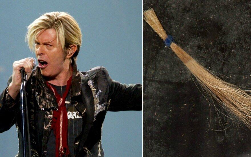 Davido Bowie plaukų sruoga