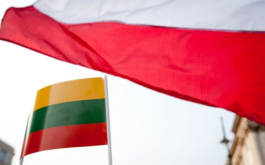 Lithuanian, Polish experts to draft by year-end plan for natnl minorities' education