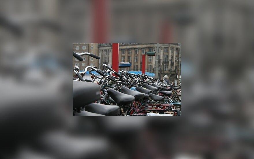 Olandija – milijonų dviračių karalystė