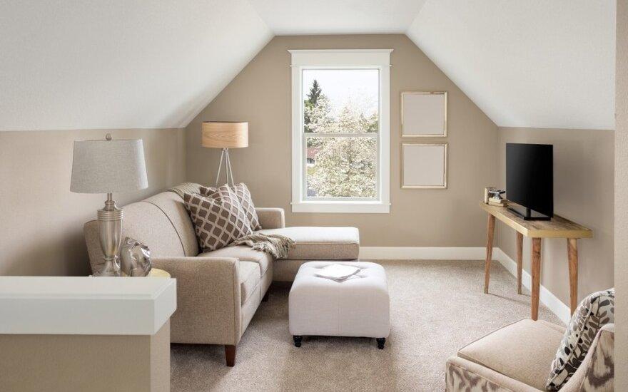 Kodėl mažą butą turėti yra geriau nei didelį?