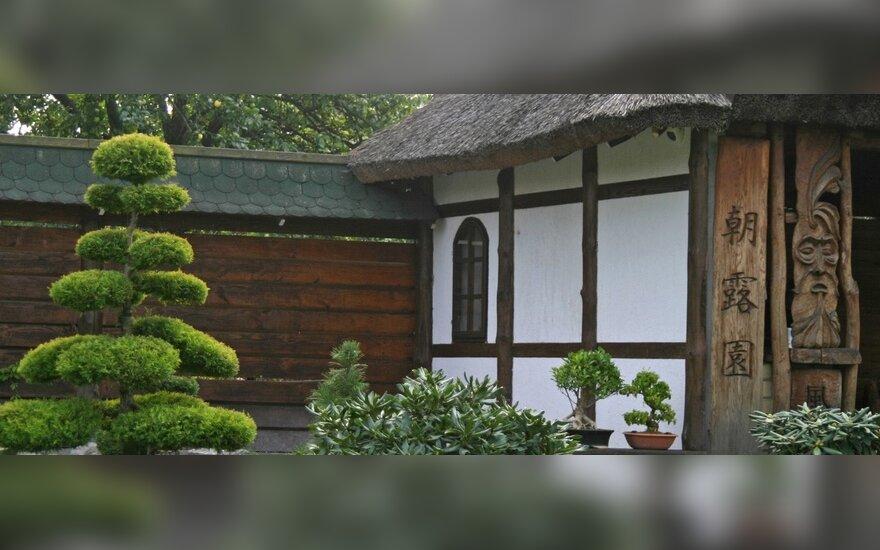 K.Ptakausko japoniško stiliaus Ryto rasos sodas Alytuje