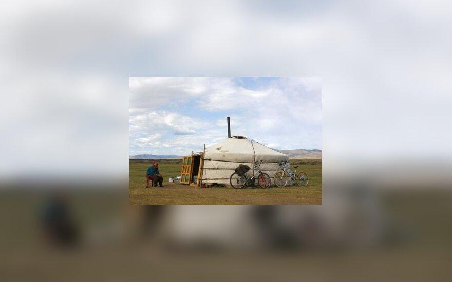 Apie pusę mongolų gyvena jurtose. Vilnonio veltinio jurta pastatoma maždaug per valandą, jos durys nukreipiamos į pietus, apsisaugant nuo šiaurės vėjų.