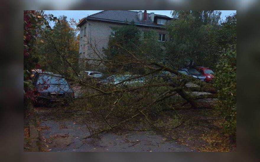 Fotografuok! Lietuvoje siaučia vėjas