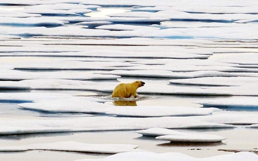 Mokslininkai įspėja: Žemė artėja prie kritinio taško ir tada prasidės domino efektas