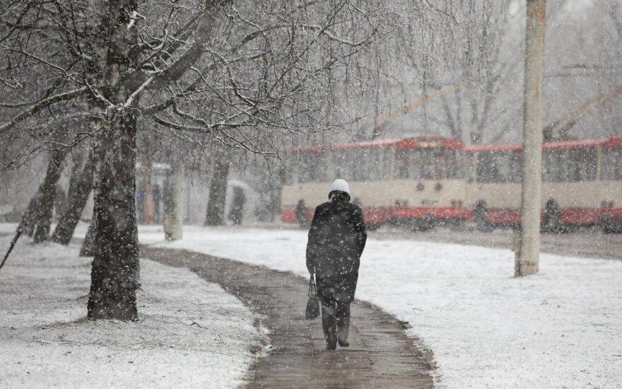 Sinoptikė: nuo vasario vidurio gali prisnigti tiek, kad maža nepasirodys