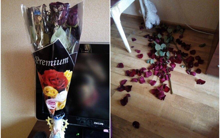 Šventinį rytą apkartino netikęs pirkinys: jau ir dėl gėlių reikia saugoti čekį?