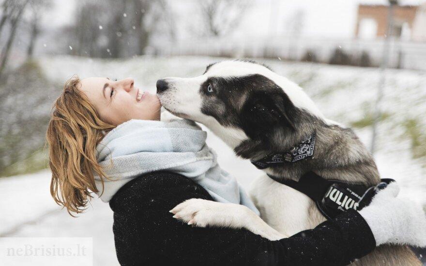 Nusprendė gelbėti liūdesio apimtą šunelį Tako: puikiai žinojau, ką reiškia tokia būsena